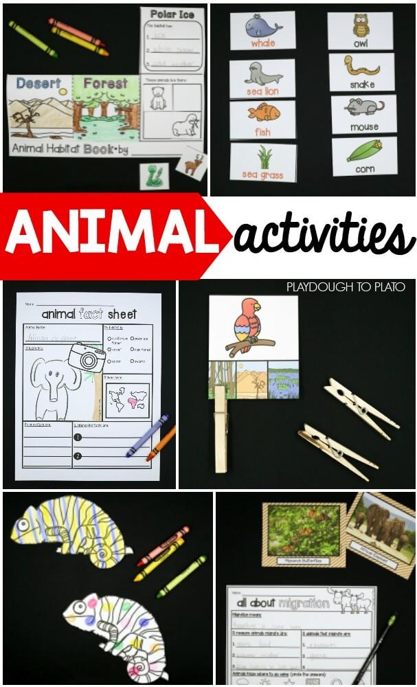 Forest Animals Preschool Pack