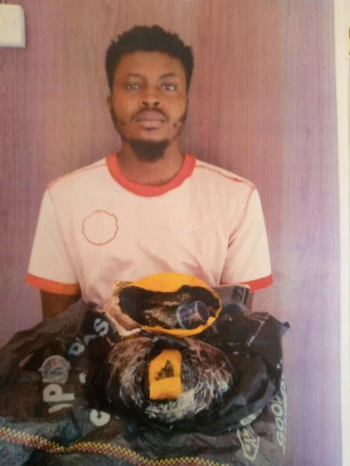 Abel Godwin Idio arrested in FUTMINNA for selling cannabis and other drugs