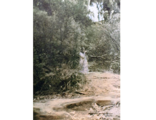 the most famous ghost photographs ever taken image 9
