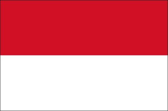 Resultado de imagem para indonésia bandeira