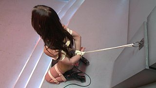 Shy_girl_returns_to_be_dominated Preview Image