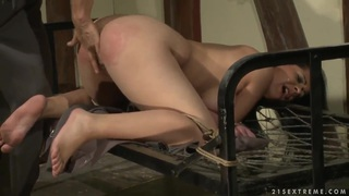 Aleksa the hot girl with pretty big boobs got tied up by her boyfriend and getting naughtily punished by him. Preview Image