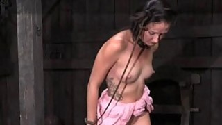 Tormented slave is giving master a lusty oraljob Preview Image