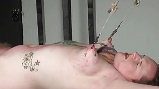 Racked amateur slave in hardcore bdsm and nipple Preview Image