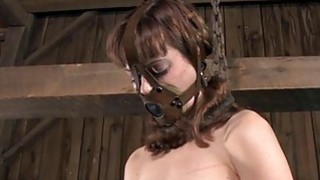 Hotty in latex suit gets_cunt and anal prodding Preview Image