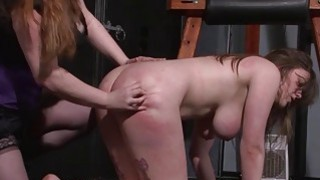 Lesbian Taylor Hearts extreme humiliation and bdsm Preview Image