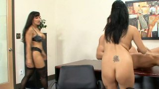 Lisa Ann & Sativa Rose know what to do with_strong cocks Preview Image