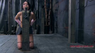 Beautiful art of BDSM_submission with_brunette slave girl Bethany Preview Image
