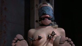 Sophie Ryan is filming in_a hardcore_BDSM video performing professional skills Preview Image