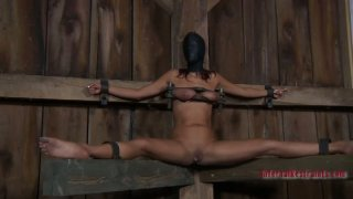 Spoiled hoe Lavender Rayne gonna be tied up for BDSM session Preview Image