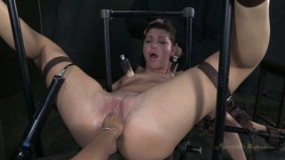 Poor brunette Mia Gold gets attached to some BDSM stuff and sucks a cock Preview Image