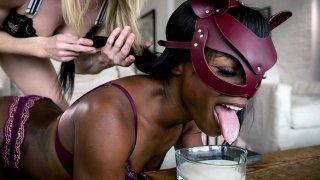 Blonde keeps Ebony BDSM Sex-Goddess Ana as_Cat! Preview Image