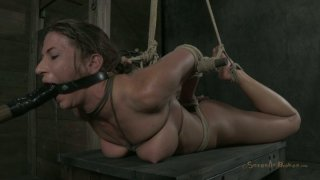 Dirty-minded hooker in hogtie bondage Ariel X moans Preview Image
