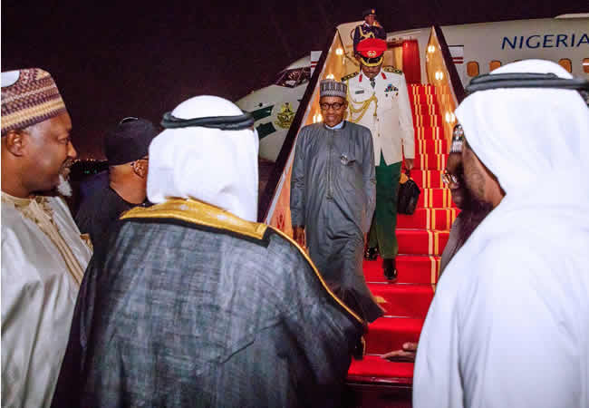 Uae Commends Buhari's Leadership In Oil, Gas Sector