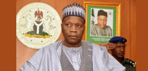 Avoiding corruption, the governor of Gombe calls on the newly elected presidents of LG – Punch Newspapers