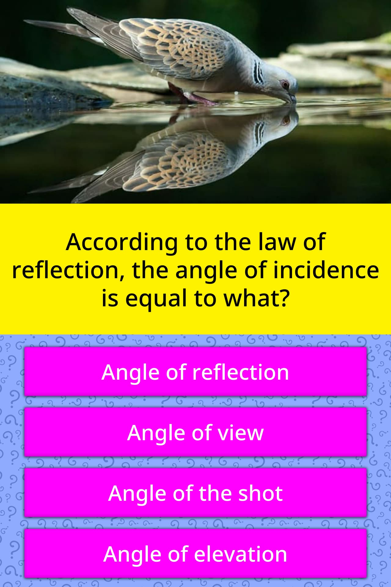 According To The Law Of Reflection