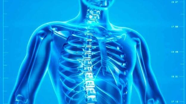 45 preguntas del cuerpo humano con sus respuestas. Trivial para niños y  adultos