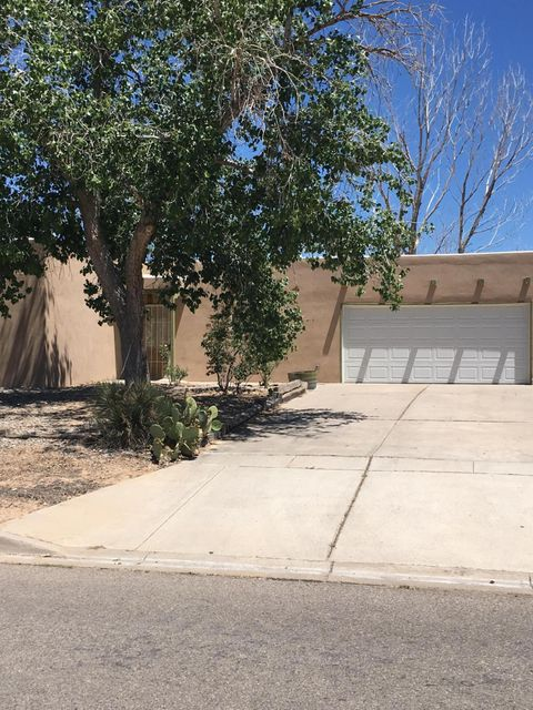 Looking for 1/2 acre with mountain views and backyard access?  There is plenty of room for all your toys or build a shop out back.  This home has new carpet, new tile, new kitchen cabinets and countertops.  It was freshly painted in early May and has elastometric stucco, lifetime roof and windows and sliding glass door all replaced in 2010.