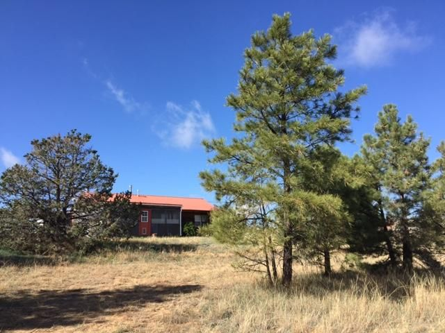 PRICE CHANGE!!!! NOW $168,000. Seller needs to be near out of state family!Country living in a real Log Cabin! Paved access w of Edgewood. Relax and enjoy a view through pines from the 22 X 14 covered, screened patio! E-Z conversion to heated sunroom for add'l living space! Cozy log home w/wood stove/fans. CFA and hot water heater were recently replaced. Efficient country living w/freezer in 8X6 attached shed. Durable Pro-panel roof. 2 outbuildings on just under 2.5 acres! Valley views and paved, public, all-weather access. A great get-away!
