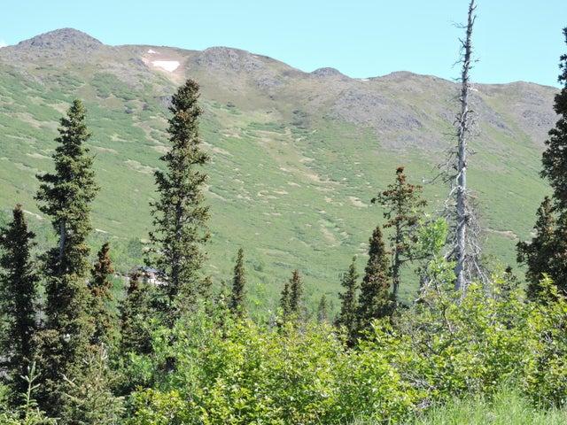 16741 Byron Drive, Anchorage, AK 99516