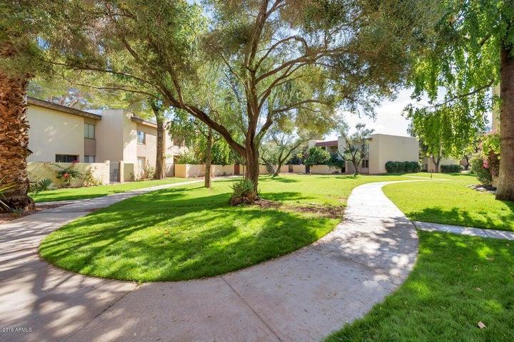 4201 E CAMELBACK Road, 84, Phoenix, AZ 85018