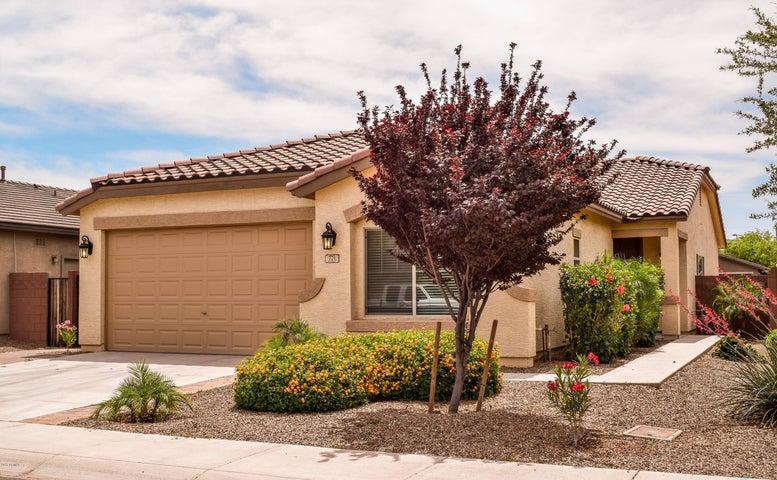 771 W PRESS Road, San Tan Valley, AZ 85140