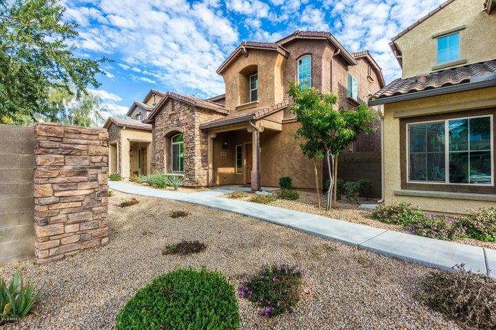 3652 E COVEY Lane, Phoenix, AZ 85050