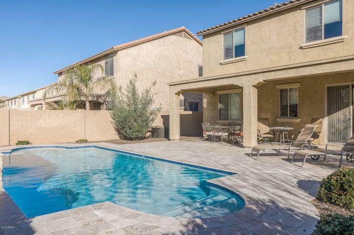 Backyard Oasis w/6 foot deep Heated Pool