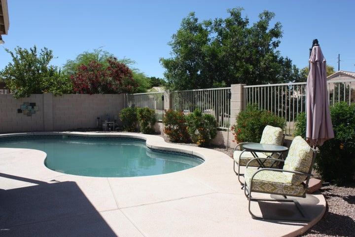 11430 W PICCADILLY Road, Avondale, AZ 85392