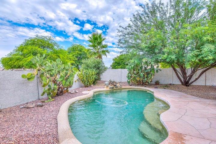 3624 W QUESTA Drive, Glendale, AZ 85310
