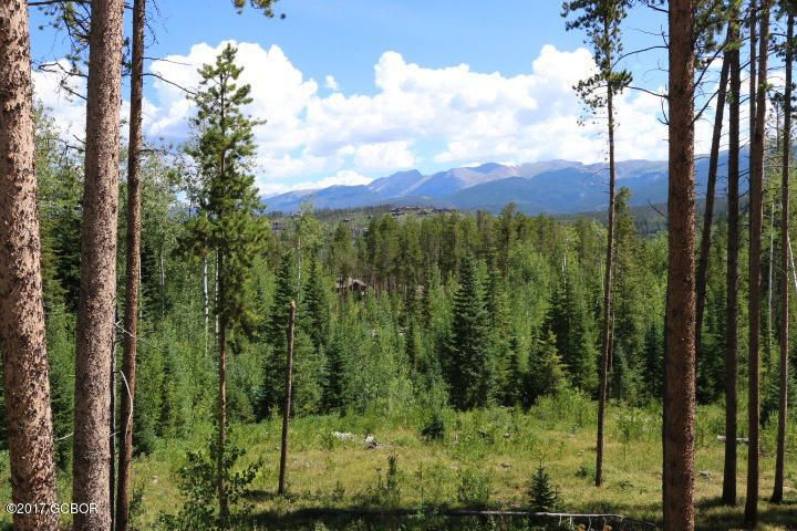 515 Forest TRL, Winter Park, CO 80482