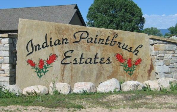 Lot 19, Indian Paintbrush
