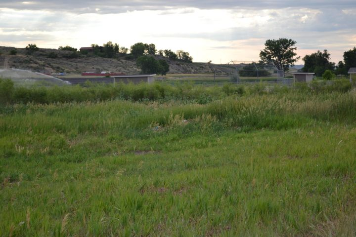 TBD Brook Street, Ranchester, WY 82839