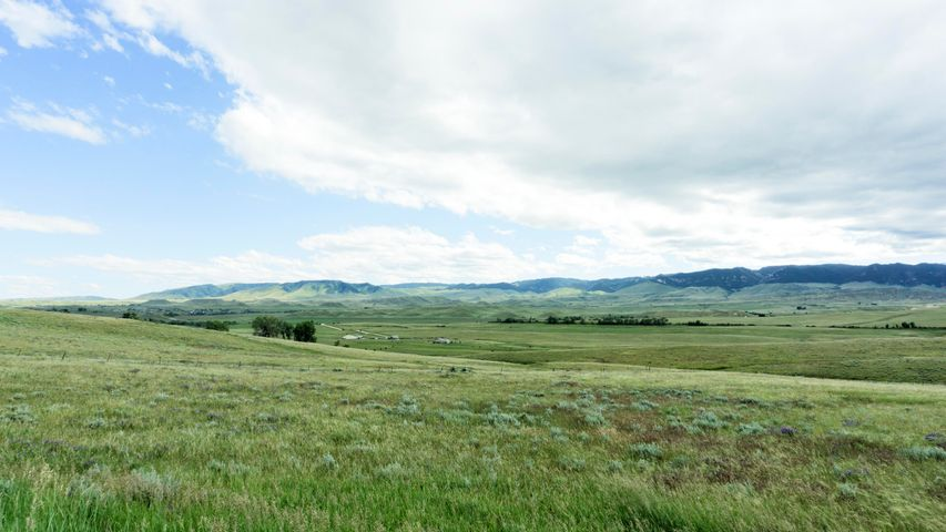 Lake Ridge Road, Buffalo, WY 82834