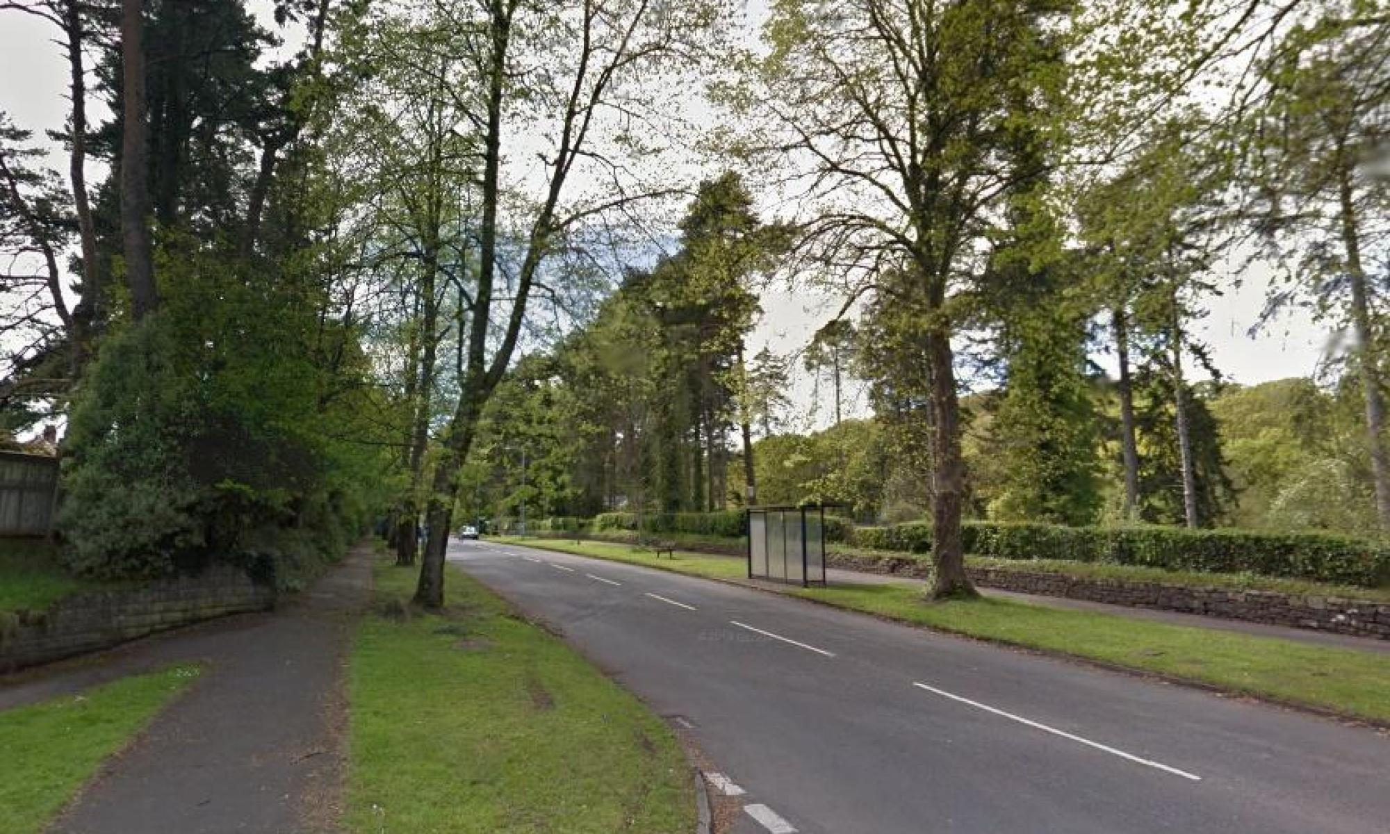 Angry residents threaten to chain themselves to trees over cycle lane