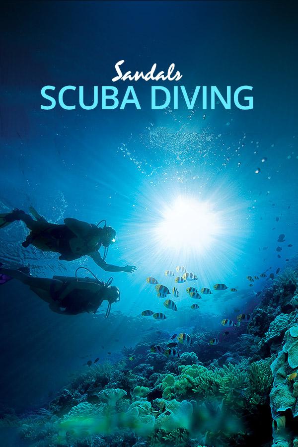 All Inclusive Scuba Diving Resorts Amp Vacations Sandals