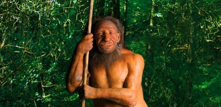 Reconstruction of a Neanderthal. Image credit: Neanderthal Museum.