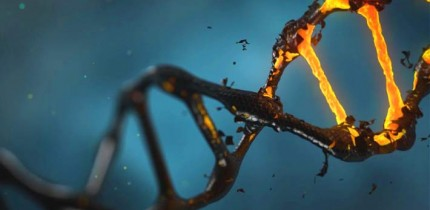 CRISPR-Cas9 gene editing can cause hundreds of unintended mutations. Image credit: Lisichik.