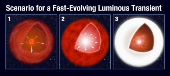 This illustration shows a proposed model for a Fast-Evolving Luminous Transient. In the left panel, an aging red giant star loses mass via a stellar wind. This balloons into a huge gaseous shell around the star. In the center panel, the massive star's core implodes to trigger a supernova explosion. In the right panel, the supernova shockwave plows into the outer shell, converting the kinetic energy from the explosion into a brilliant burst of light. Image credit: NASA / ESA / A. Field, STScI.