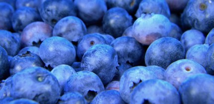 Eating 200 g of blueberries every day for a month can lead to an improvement in blood vessel function and a decrease in systolic blood pressure in healthy people. Image credit: Free-Photos.