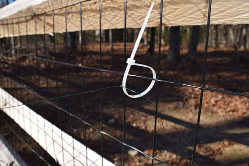 A white zip tie secures a thin wire to a black metal fence