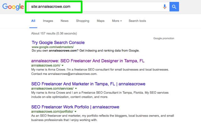 annaleacrowe_SEO audit site search