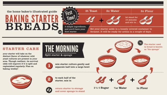 Baking Starter Breads Infographic