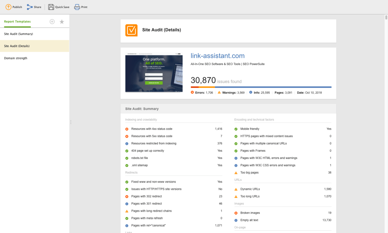 WebSite Audit Review