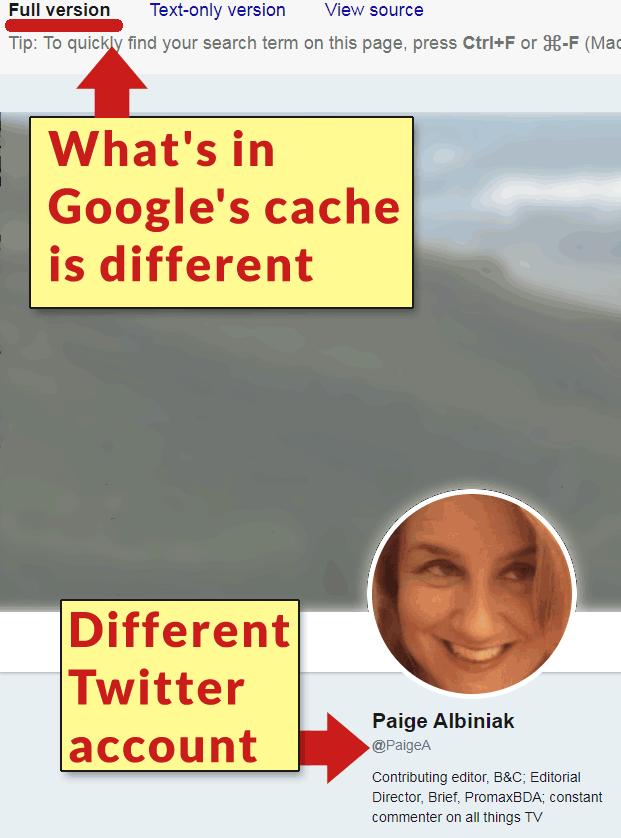 Screenshot of Google's cache for Twitter