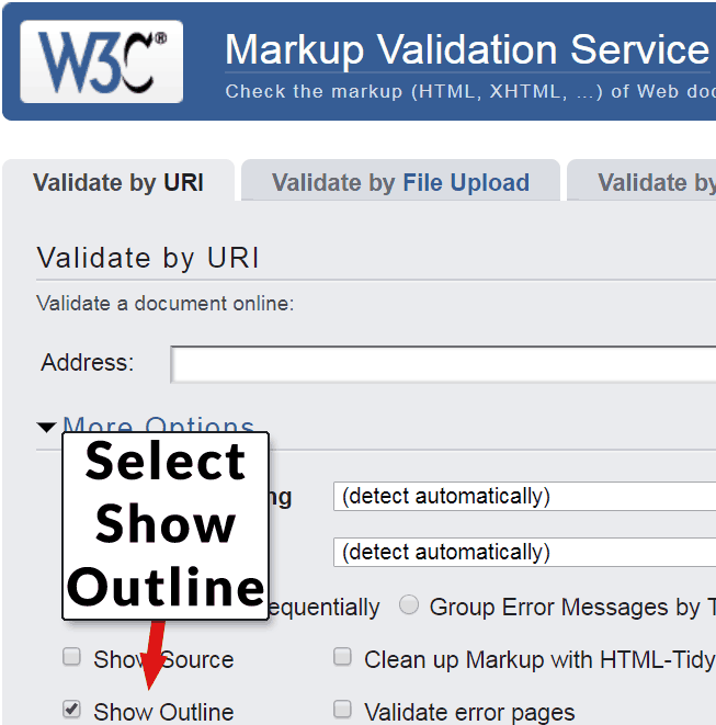 Screenshot of the W3C HTML Validator showing various options