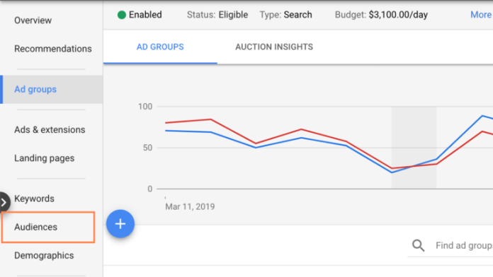 Google Ads - Audiences Tab