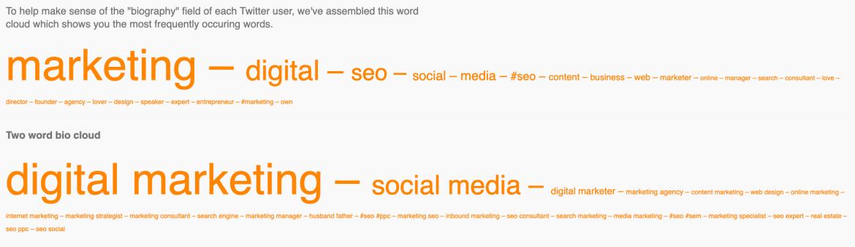 Followerwonk word cloud