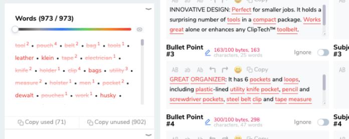 Screenshot of Helium10's Scribbles Software