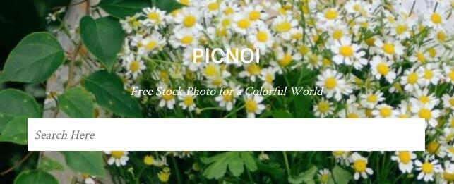 Picnoi